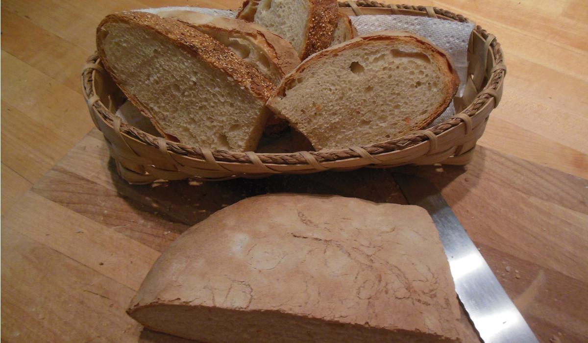 bread-pasta-1