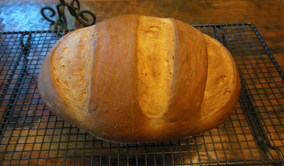 08-15-16-tomato-bread-1