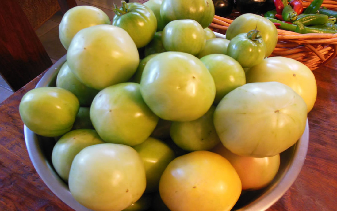 10-15-16-tomatoes