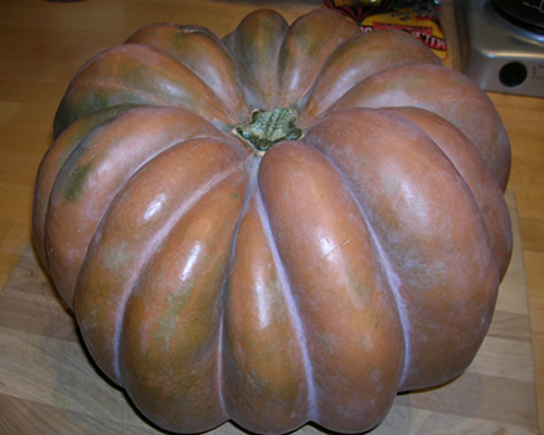 10-20-pumpkin-1