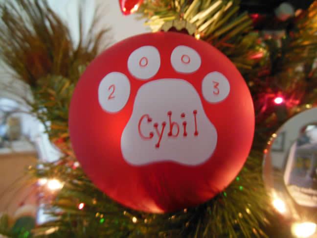 01-15-15-cybil-christmas