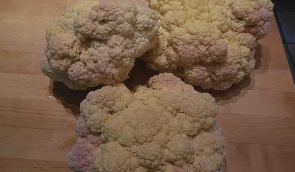 06-19-16-cauliflower-2