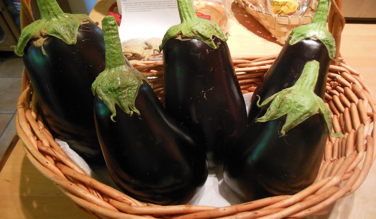 08-28-16-eggplant-1