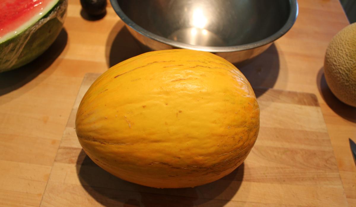 piel del sapo melon